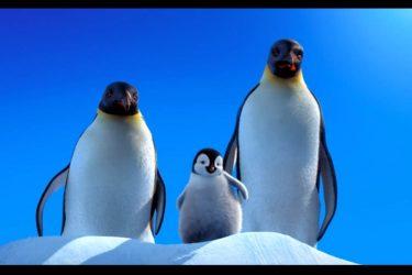 アニメ映画『ハッピー フィート』/皇帝ペンギンさんは果たして音痴を乗り越えられるのか?